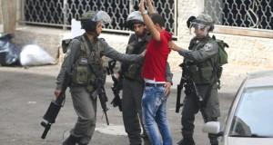 53 طفلا بينهم 11 طفلا حصيلة العدوان الإسرائيلي منذ بداية أكتوبر