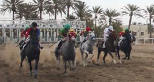 اليوم…انطلاق منافسات السباق الثالث فى موسم سباقات الخيل الأهلية لعام 2015/2016م