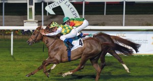 المهرة «ورود» للخيالة السلطانية تحل ثانياً في سباق كأس زايد بن سلطان آل نهيان