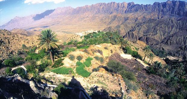 وادي مستل بنخل .. واحات خلابة في أعلى قمم الحجر الغربي
