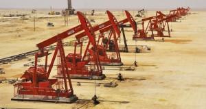 """رئيس اللجنة القطاعية للتعمين في قطاع النفط والغاز في حديث لـ """"الوطن الاقتصادي"""""""