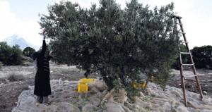 تونس: اكتشاف مخزن للأسلحة في مدنين وتوقيف إرهابيين