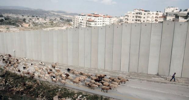 الفلسطينيون يدعون لسحب الاستثمارات من الشركات المتواطئة مع الاحتلال