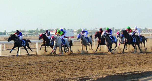 تنافس وإثارة تشهدها فعاليات سباق الخيول الحادي عشر للموسم الحالي