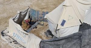 سوريا: الحكومة تطرح فـي «جنيف» مسألة داعمي الإرهاب .. ووفد المعارضة يعلن المشاركة