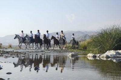 «مسير الفرسان في ربوع عُمان» يختتم رحلته على الصافنات الجياد