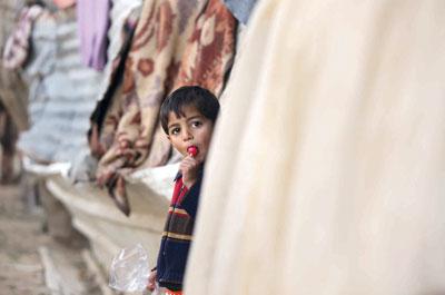 الفلسطينيون يطالبون بمشروع عربي يبقيهم بـ «التشكيل الجديد» للمنطقة
