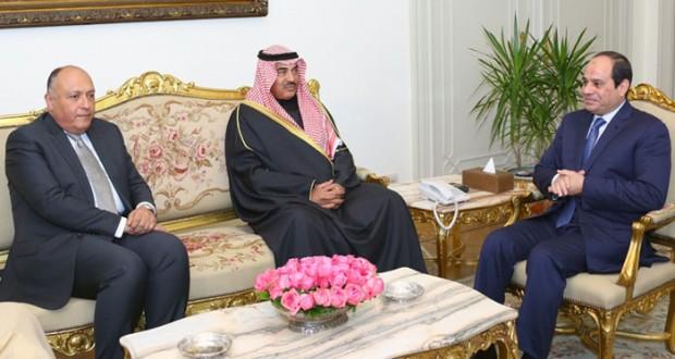 توافق مصري كويتي على دفع وتعزيز العمل العربي المشترك