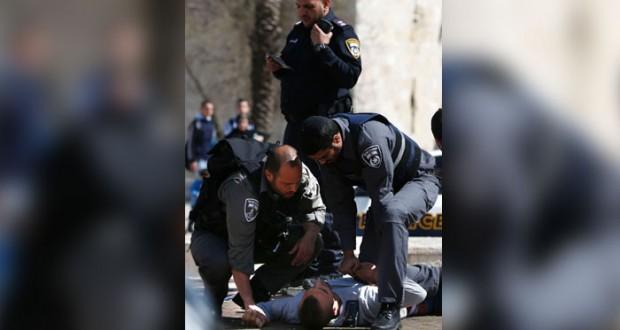 الاحتلال يزيد من سعاره والفلسطينيون يحيون (الإبراهيمي)