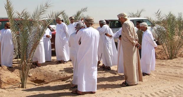 معهد تطوير الكفاءات بديوان البلاط السلطاني يقيم برنامجا تعريفيا وزيارة ميدانية لمزارع المليون نخلة بالظاهرة