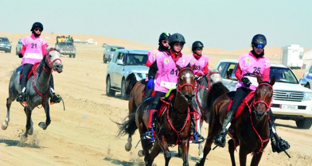 نجاح كبير تشهده بطولة كأس الخليج الأولى للسيدات للقدرة والتحمل بقطر
