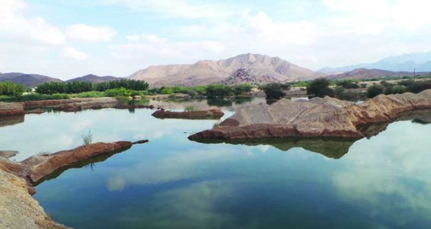 بحيرات ومستنقعات من مياه الصرف الصحي تهدد سلامة البيئة في الرستاق