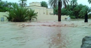 أهالي بلدة الدريز بعبري يجددون مطالبهم بإنشاء سد حماية للوقاية من دخول فيضانات مياه شعبة القرية إلى منازلهم وممتلكاتهم