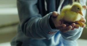 """مؤسسة الدوحة للأفلام تقدم """"نظرة على الأفلام الفرنكفونية"""" وتعرض """"الطيور المهاجرة"""""""