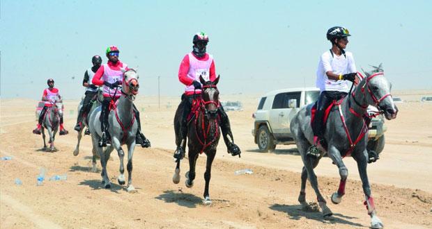 تنظيم رائع لبطولة مجلس التعاون الخليجي للقدرة الأولى بالبحرين
