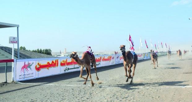 12 شوطا مثيرا في منافسات اليوم الثاني للسباق السنوي للهجن الأهلية على ميدان صحار