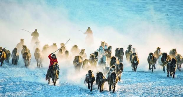 المعرض الصيني العماني يعكس مقومات السياحة الإنسانية والطبيعية والتراثية للبلدين