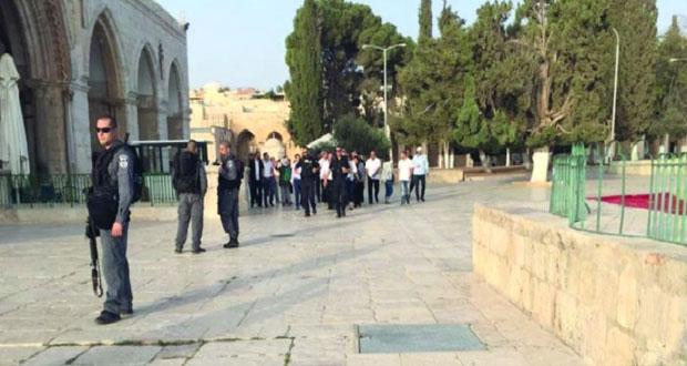 منظمات إرهابية إسرائيلية تخطط لاقتحامات جماعية لـ«الأقصى»