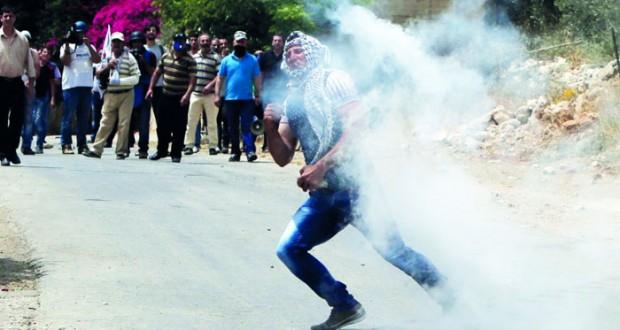 الاحتلال يصعد من اعتداءاته .. وفعاليات فلسطينية لإحياء ذكرى النكبة