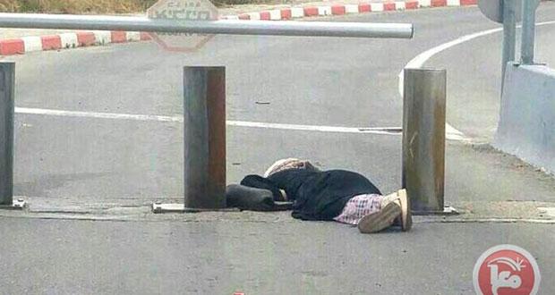دولة الاحتلال تصعد من إرهابها في القدس والضفة المحتلتين