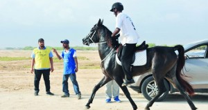 9 خيول تكسب التأهل في المسابقة التأهيلية للقدرة والتحمل بصلالة