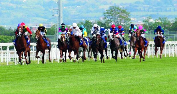 الخيالة السلطانية تفوز بشوط دبي للخيول العربية الأصيلة بإيطاليا