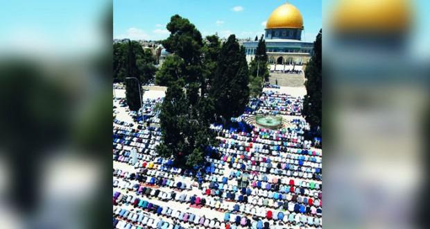 رأي الوطن..ما يجب أن يسأله الإسرائيليون قادتهم