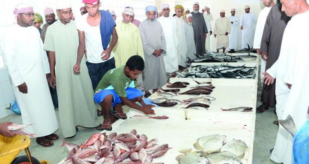 سوق الأسماك بنزوى يشهد حركة نشطة