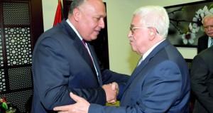 مصر: لا نية لتعديل مبادرة السلام العربية
