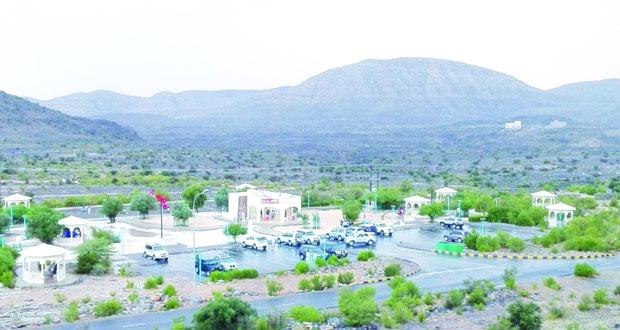 """أكثر من """"40″ ألف زائر يقضون إجازة عيد الفطر بالجبل الأخضر"""