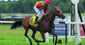 الخيول العمانية تفرض هيمنتها وتخطف الألقاب بسباق دبي الدولي للخيول العربية الأصيلة ببريطانيا