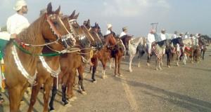 إثارة وتشويق في استعراضات الخيول والهجن العربية الأصيلة والفنون التراثية بعبري
