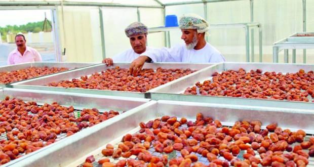 توفير أكثر من 70 غرفة تجفيف التمور لعدد من المزارعين