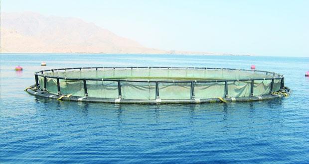 الأحد القادم .. فتح باب التسجيل لطلبات مشاريع الاستزراع السمكي التجارية