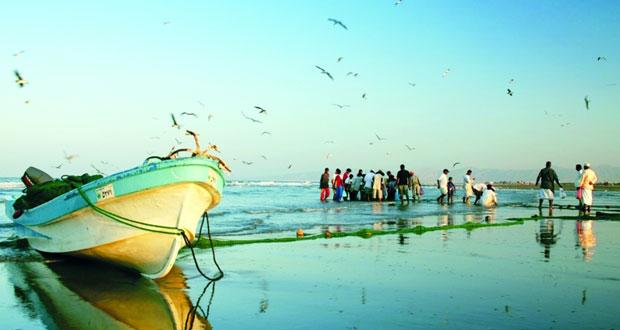 حركة تجارية نشطة تشهدها مواسم الصيد البحرية في السلطنة
