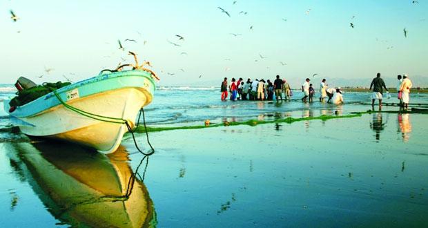اليوم .. بدء سـريان حظر صيد أسماك الكنعد في السلطنة