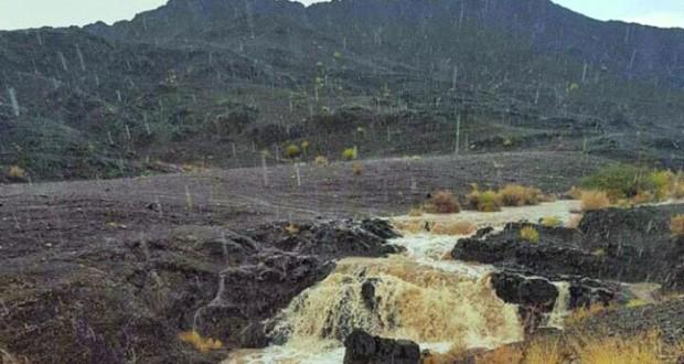 أمطار متفاوتة الغزارة على محضة والروضة بالبريمي