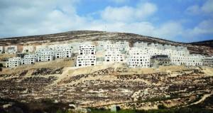 فلسطين تشدد على مواصلة مساعيها لطرح موضوع التصعيد الاستيطاني