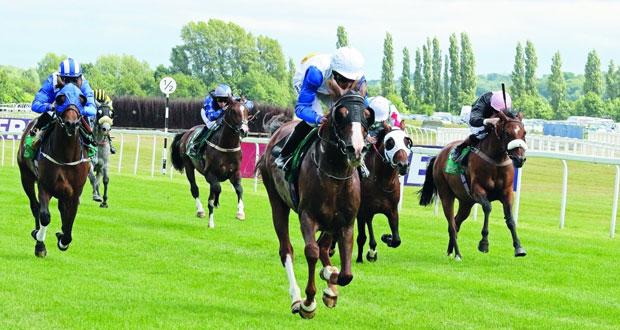 الخيول العمانية تسجل انتصارا جديدا في سباق الخيالة السلطانية بالمملكة المتحدة