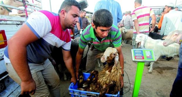 دعوات فلسطينية لتأدية صلاة العيد في الأقصى
