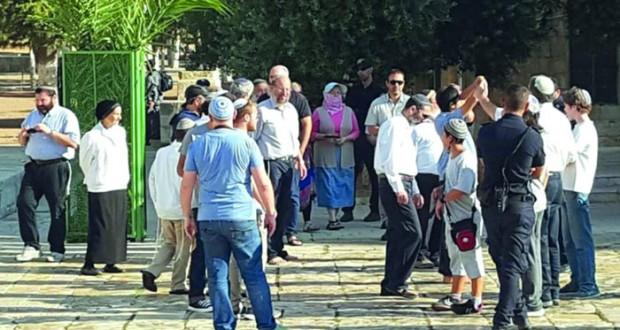 الاحتلال يعتدي على مقدسية بـ(الأقصى) ويشن حملة مداهمات بالضفة