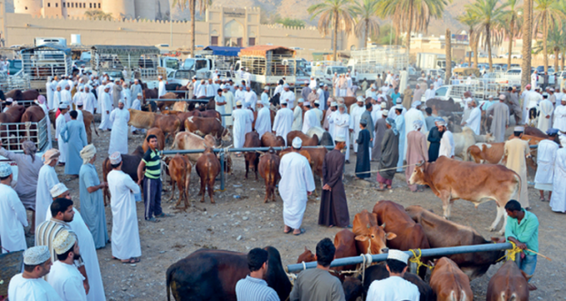 هبطات العيد تشهد إقبالا كبيرا