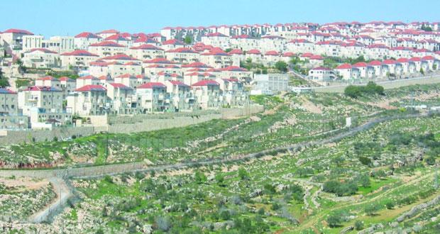الخارجية الفلسطينية تؤكد مواصلة تحركها السياسي ضد الاستيطان
