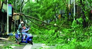 إغلاق المدارس وتوقف النقل مع وصول الإعصار ساريكا إلى إقليم صيني