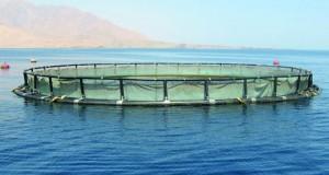 وزير الإسكان يعتمد اتفاقيتي منح حق الانتفاع بأراض لمشـاريع الاستزراع السمكي بقريات والدقم