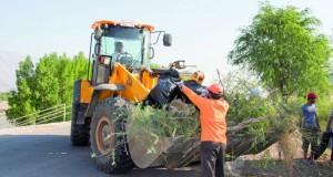 بلدية سمائل تدعم فريق الظاهر فـي تنظيم حملة «عمان بلا مشوهات»