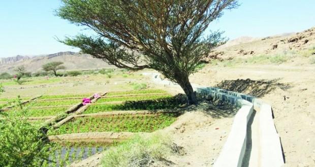 بلديات الظاهرة تنفذ مشاريع مائية لصيانة الافلاج بولايات المحافظة