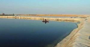 17 طلباً لإقامة مشاريع الاستزراع السمكي بقيمة 117 مليون ريال عماني