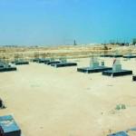 """الأربعاء المقبل..الاحتفال بوضع حجر الأساس لمصنع """"سيباسك عمان"""" بالدقم"""