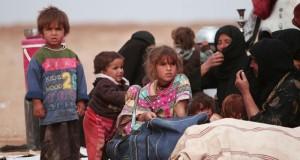 بعد 12 يوما من انطلاقها .. معركة الموصل تتوقف لـ (لترسيخ النجاحات)